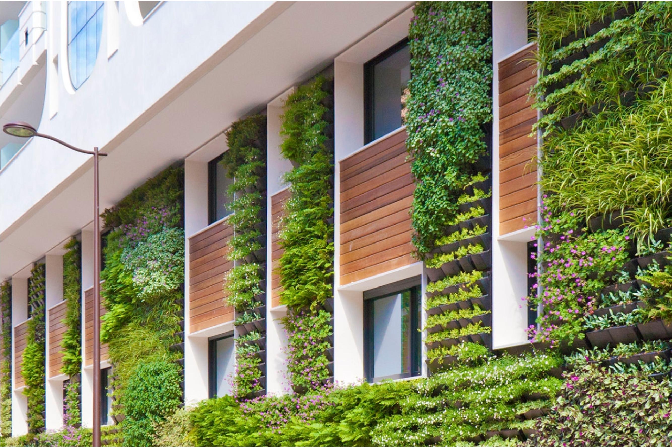 Vertical Gardens And Green Facades Blarrow